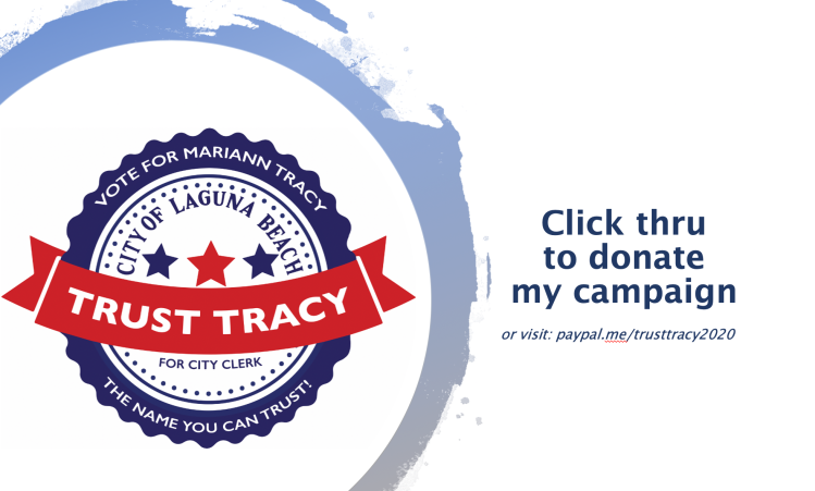 Donate to Mariann Tracy's campaign at paypal.me/trusttracy2020